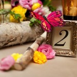 Mark and I used the branches from our ceremony along with vintage frames for our tabe numbers!