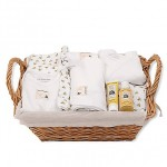 burts bees baby essentials kit